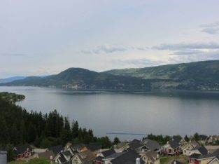 Luxury Cottage with Spectacular Lakeviews! – Fully Furnished