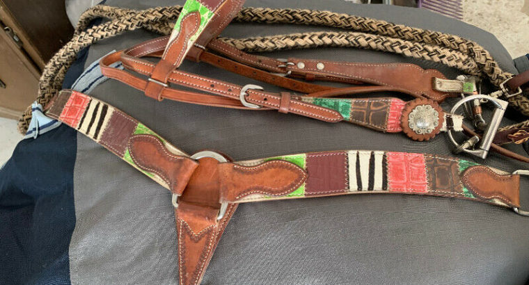 Western bridle, bit. reins and breast collar