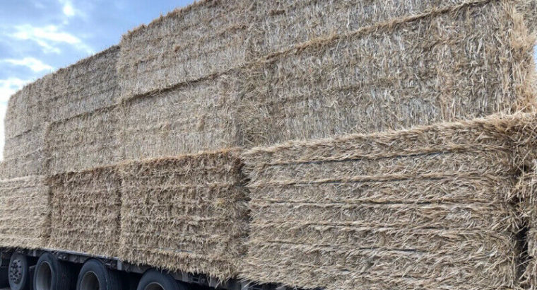 Straw Bales, Large Bales Only!