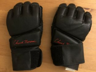 Chuck Norris MMA Gloves – Large