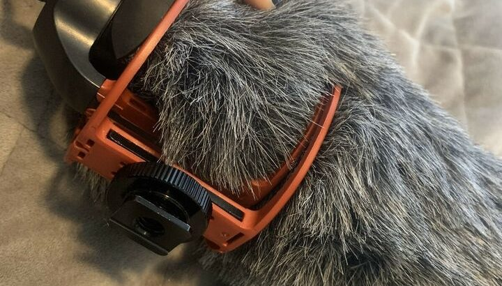 Rode easygo video microphone