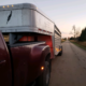 Livestock Trucking Available
