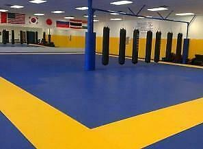 Home Mats,Gym Mats, Gymnastic Mats,Taekwondo Mats, Eva Mats, Puzzle Mats, Martial Art Mats, Wrestling mats, Grappling Ma