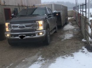 Livestock trucking