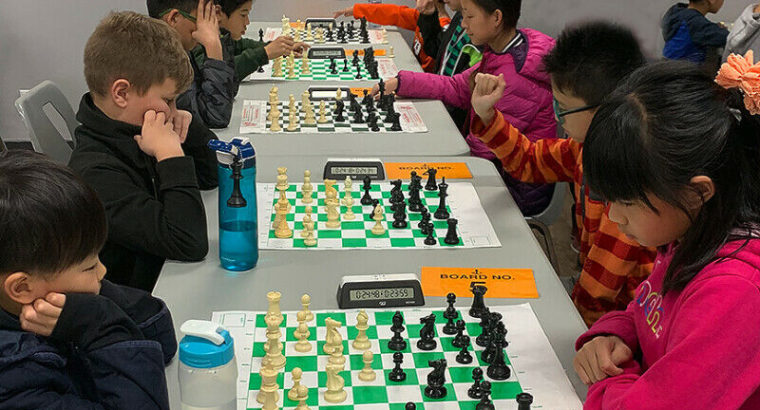 New students can learn chess after a FREE chess evaluation
