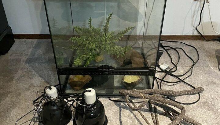 Large terrarium kit for sale!