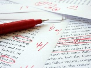 Professional editing and proofreading services