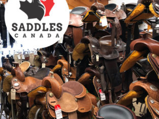 New & Used Western & English Saddles for Sale