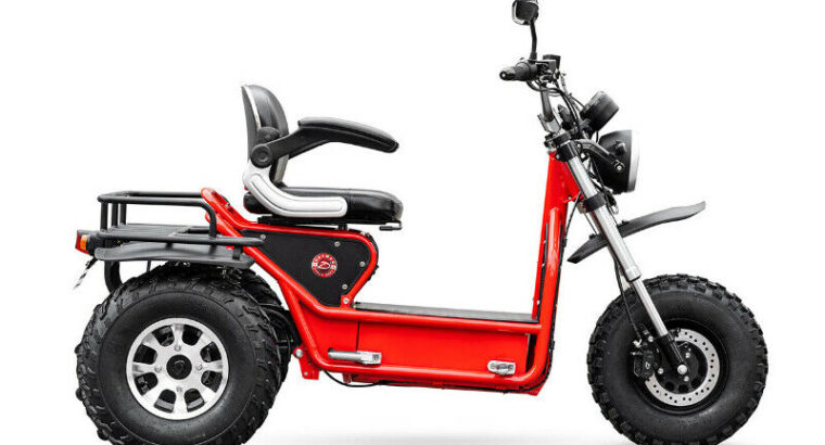 The Boomerbeast 2.0 – Electric Mobility Scooter