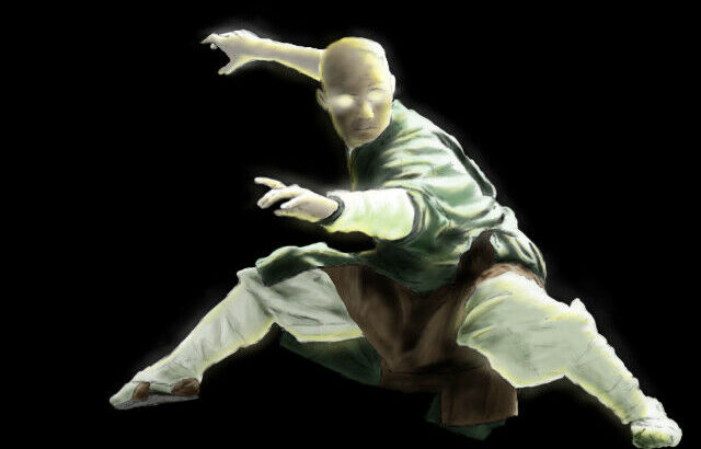 Online martial arts lessons