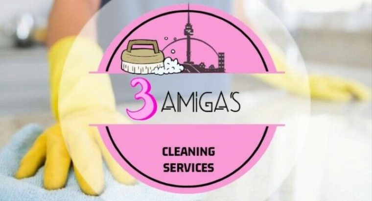 $59 Home Cleaning – Steam Cleaning! Same day Appointment, NOW!