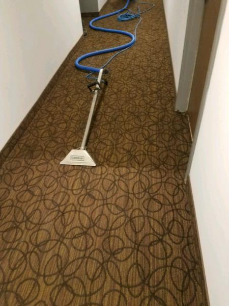 $99 FULL HOUSE TRUCKMOUNT STEAM CARPET CLEANING SERVICE