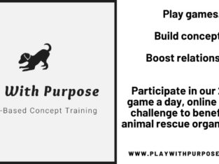 Online Games-Based Concept Training