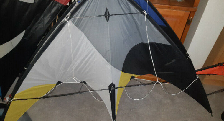 Two Cavalier du Ciel Stunt Kites