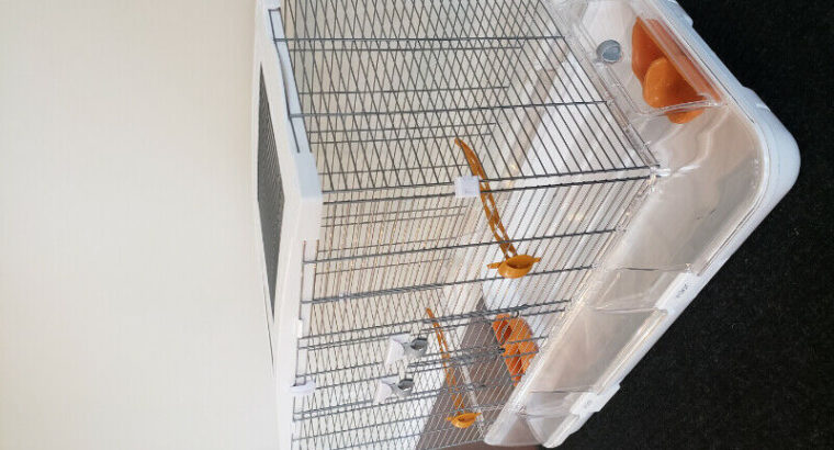 2 Like new Vision cages