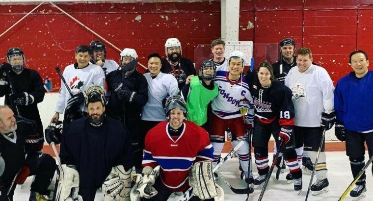 Adults hockey skate