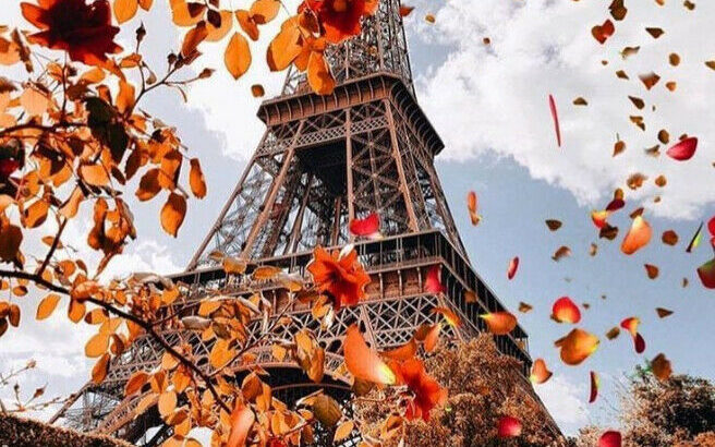 Join our Online French Course Today!