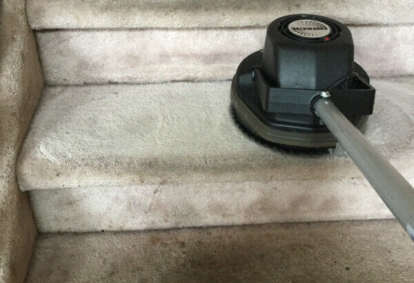 $25 /RM CARPET CLEANING TO REMOVE CAT & DOG URINE & STAINS