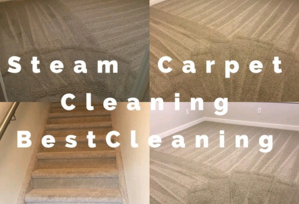 $99 FULL HOUSE TRUCKMOUNT STEAM CARPET CLEANING SERVICE