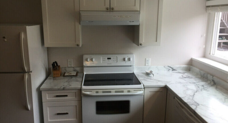 Bright, modern, fully-furnished downtown 2 bdr rental