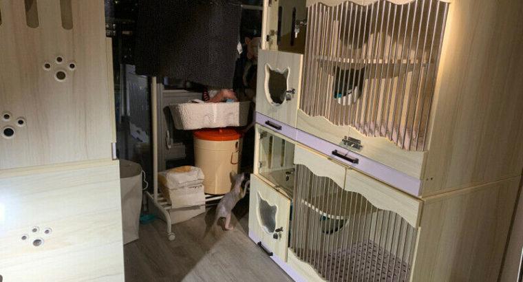 Customized Handmade Cat House