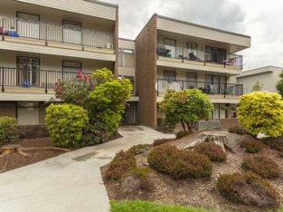 LARGE RENOVATED 1 BEDROOM + OFFICE APARTMENT FOR RENT COQUITLAM