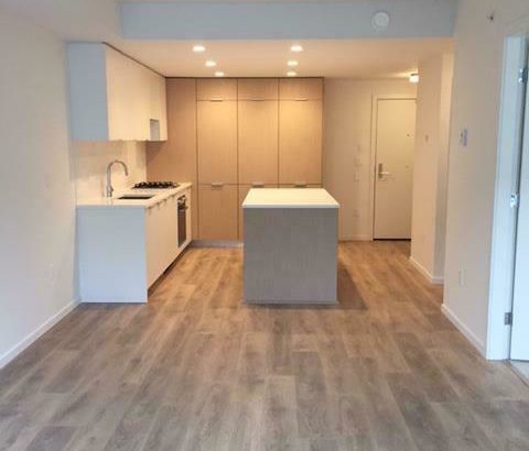 1 Bedroom and Den Near QE Park and Main St
