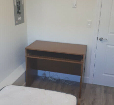 Furnished Room Available in 3 Bedroom Laneway House(UBC/Langara)