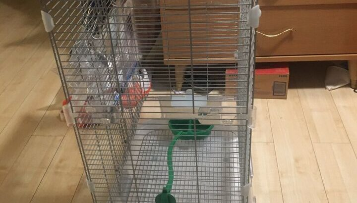Vision double height bird cage