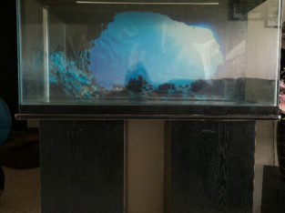 30 Gallon HAGEN fish Tank with stand