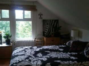 NOW or JUNE 15th – LARGE bright furnished top floor bedroom
