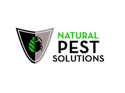 Pest Control Surrey