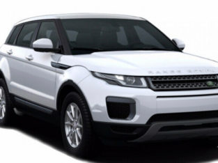 Driver plus car Audi or range rover. Special rate for day trip