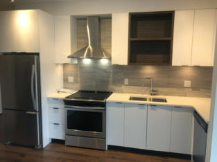 BRAND NEW Royal Oak 1 Bed + Den Unit for rent-Cat friendly