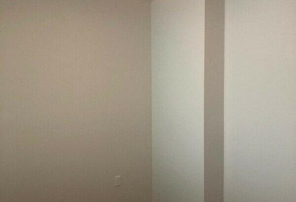 BRAND NEW Royal Oak 1 Bed + Den Unit for rent-Cat friendly