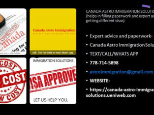 CALL FOR AN IMMIGRATION CONSULTANT-PROFESSIONAL ADVICE/PAPERWORK