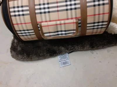 Pet carrier and blanket
