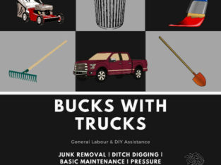 General Labour | Yard Work | Junk Removal | Moving Help | Painti