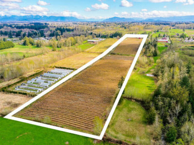 19.85 ACRES – BLUEBERRY FARM AND READY TO BUILD HOUSE