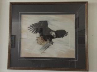 """The Eagle"" Chalk Art"