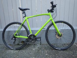 Raleigh Cadent 2, City Bike, XL, Shimano 3×8, Disc Brakes, Green