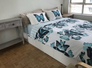 A Master bedroom with designated bathroom to rent