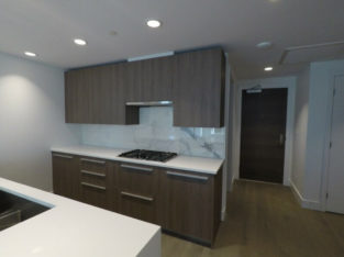 Spacious, brand new 2 bdr + den condo in Lynn Valley!