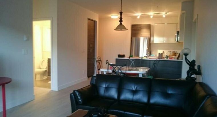 Two bedroom apartment available immediately in Surrey.