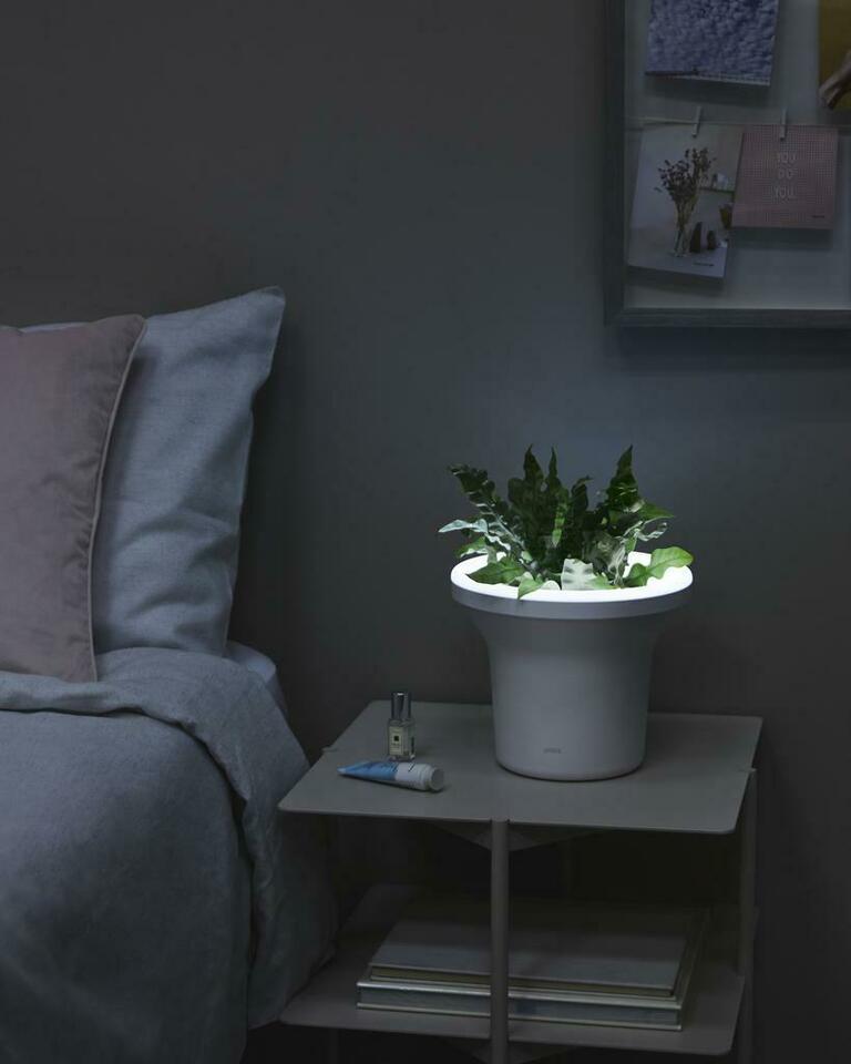 Ora Illuminated Planter