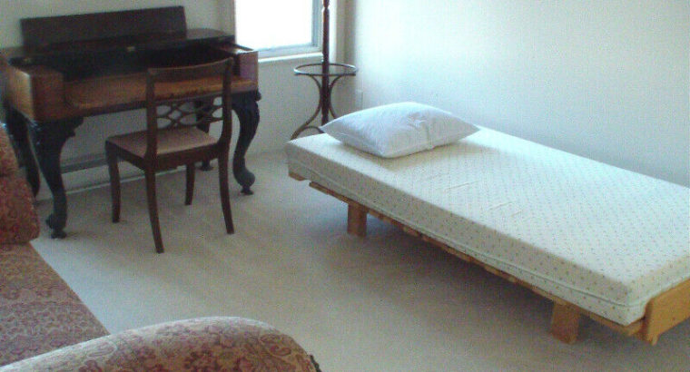 Furnished 2 Bed Apt. w/Balcony-Oct 1