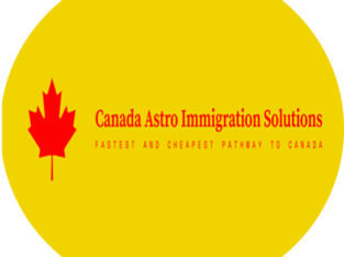 immigration services-reliable,honest,trustworthy-great advice—