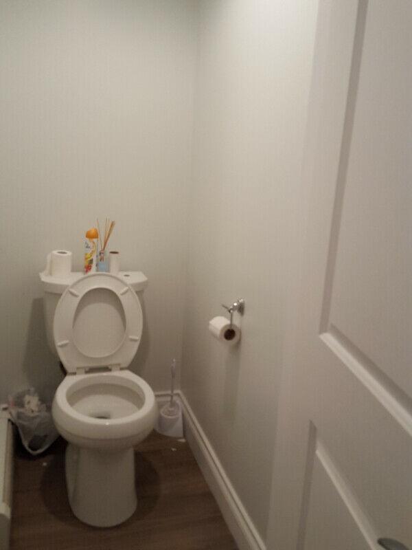 $800 Douglas Park Furnished Room